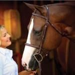 main_cta_horse