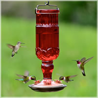 Perky Pet Antique Hummingbird Feeder