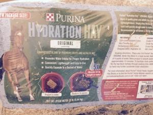 Hydrating Horses