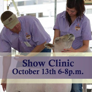 New Braunfels_ShowClinic Graphic