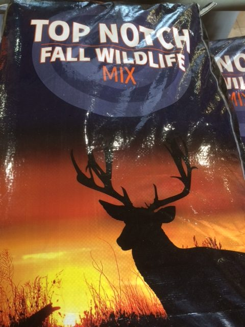 Top Notch Fall Wildlife Mix