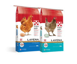 Purina Layena Crumbles & Pellets