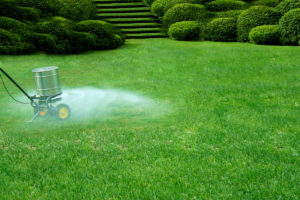 fertilizing lawns