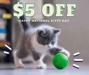 Happy National Kitty Day